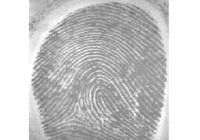Scanner impronta