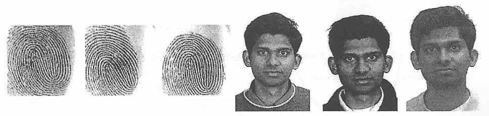 Variabilità biometrica